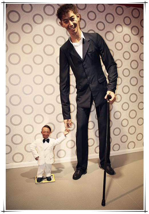 世界舌头最长的人_世界上最高的人与最矮的人_南京和雍雕塑艺术有限公司
